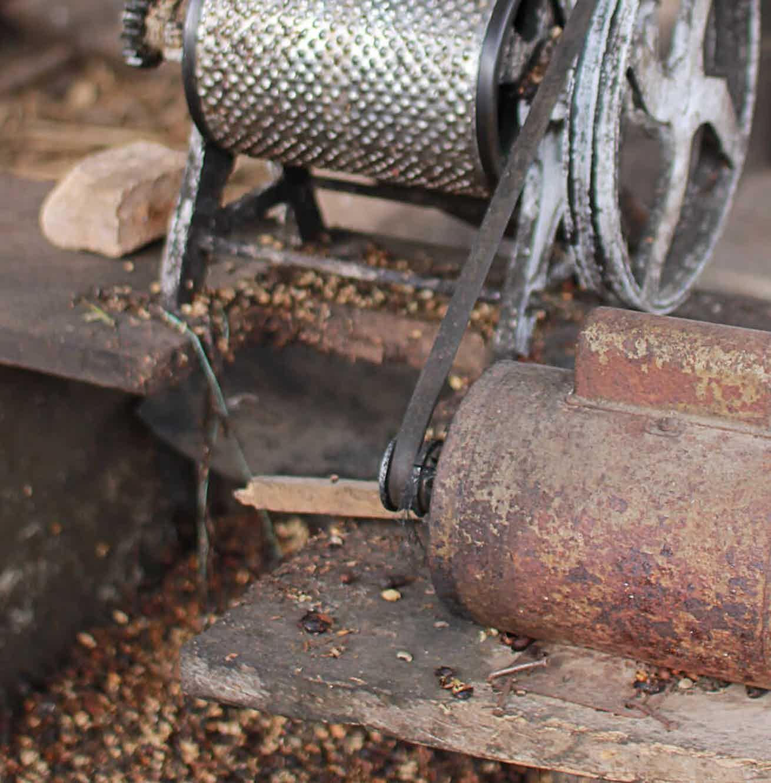 Coava Coffee Roasters Las Capucas